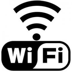 Borne Wifi et prise RJ45 en façade, câble 10m, inter Wifi & charge