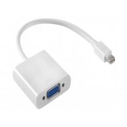 Adaptateur Mini Display Port M vers VGA Femelle - Blanc - 20cm
